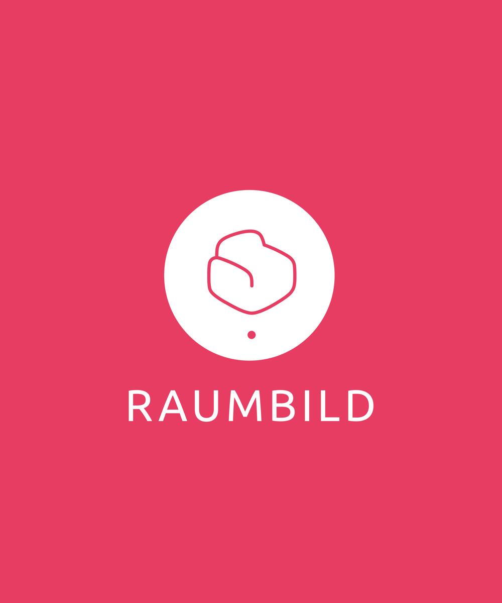 Raumbild Branding — Litvinsky Studio